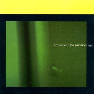 Imagen de 'Permanent: Joy Division 1995'