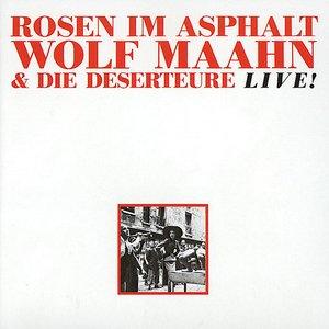 Imagem de 'Rosen Im Asphalt'