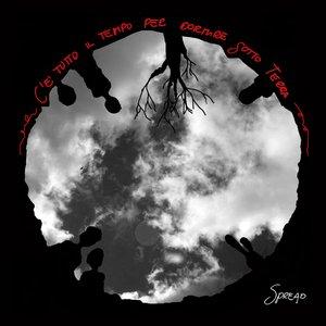 Image for 'C'è tutto il tempo per dormire sotto terra'