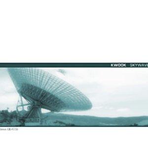 Image pour 'Skywave'