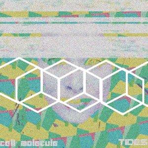 Image for 'Tides'