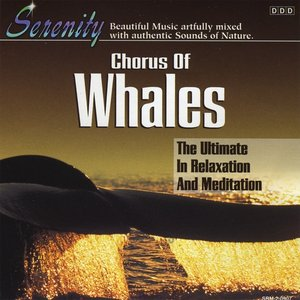 Image for 'Chorus of Whales'