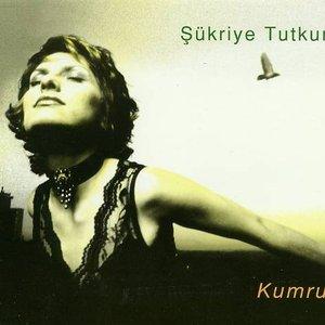 Image for 'Kumru'