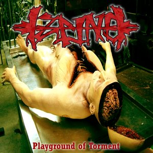 Image for 'Playground of Torment'