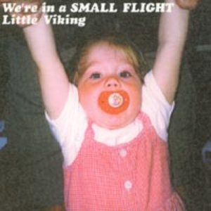 Immagine per 'We're In A Small Flight'