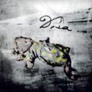 Image for 'dísa'