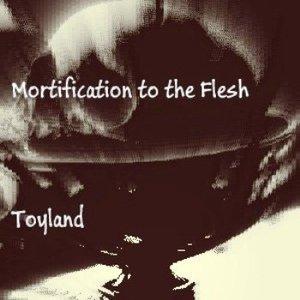 Image for 'Toyland'