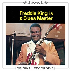 Imagen de 'Freddie King Is a Blues Master'