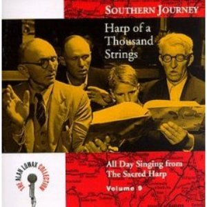 Image for 'Southern Journey Vol 9: Harp of 1,000 Strings'