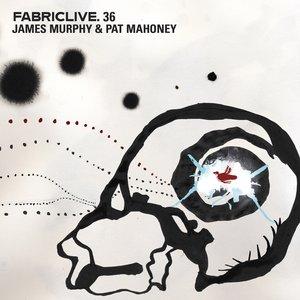 Imagen de 'Fabriclive.36'