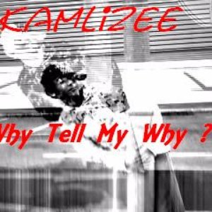 Image for 'Why Tell My Why ? (Single Version)'