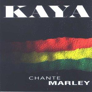 Immagine per 'Kaya chante Marley'