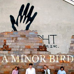 Image for 'a minor bird'