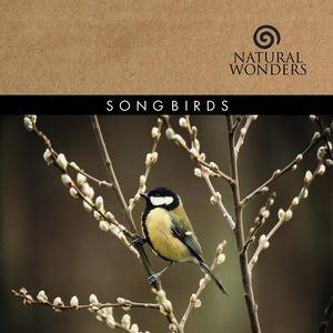 Bild für 'Songbirds'