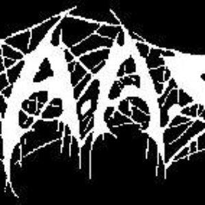 Image for 'S.A.A.E.I.'