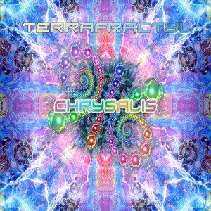 Image for 'Chrysalis'