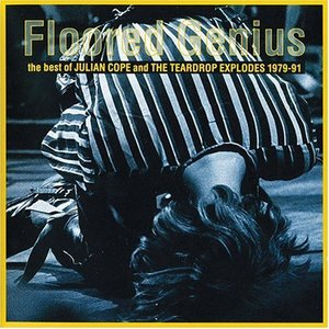 Image pour 'Floored Genius: The Best Of Julian Cope And The Teardrop Explodes 1979-91'