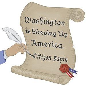 Image for 'Washington Is Bleeping Up America'