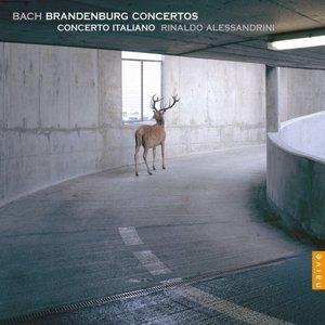 Bild för 'Brandenburg Concertos'