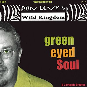 Image for 'Green Eyed Soul'