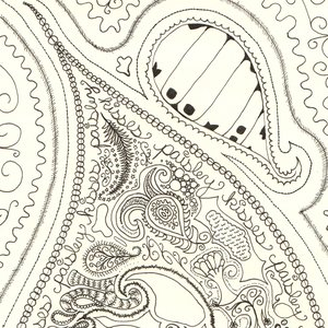 Image for 'Paisley Kisses'
