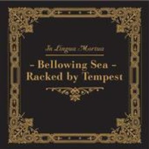 Image for 'Bellowing Sea - Racked By Tempest'