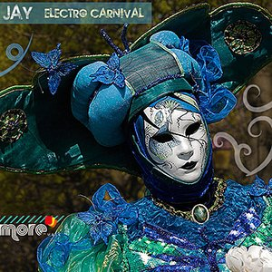 Image for 'Electro Carnival'
