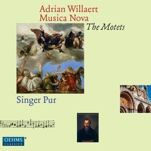 Image for 'Willaert: Musica Nova - The Motets'