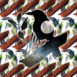 Image pour 'Moonlight & Birds'