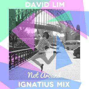 Image for 'Ignatius Remix'