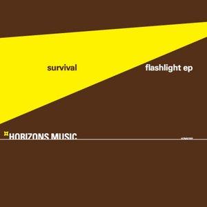 Image for 'Flashlight EP'