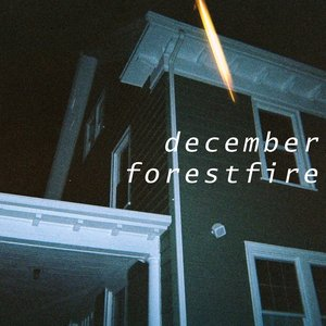 Image pour 'December Forest Fire'