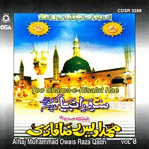 Image for 'Too Shama-e-Rislat Hae Vol 8'
