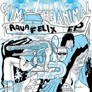 Image for 'AQUAFELIX EP'