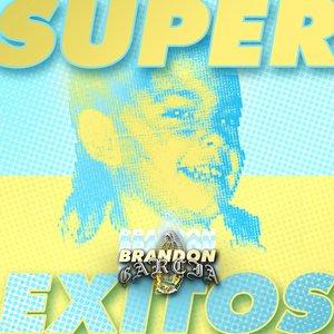 Image for 'Super Exitos'