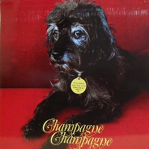 Image pour 'Champagne Champagne EP'