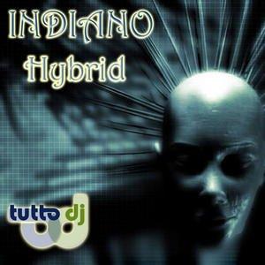 Image for 'Hybrid'