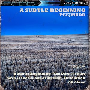 Image for 'A Subtle Beginning'