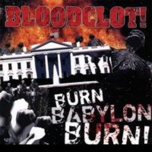 Image for 'Burn Babylon Burn'