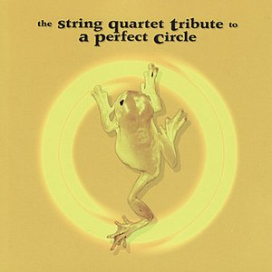 Image for 'The String Quartet Tribute to A Perfect Circle'