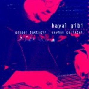 Image for 'Hayal Gibi'