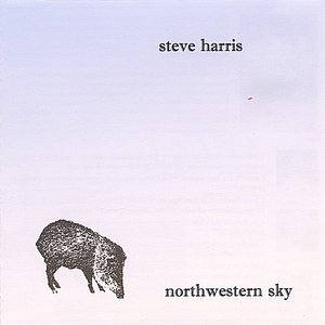 Image for 'Northwestern Sky'