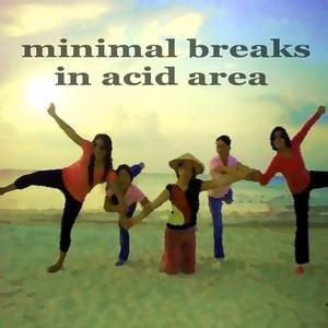 Image pour 'Minimal Breaks In Acid Area (dub House Music)'
