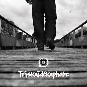 Image for 'TRISKAIDEKAPHOBE'