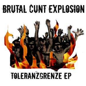 Image for 'Brutal Cunt Explosion'