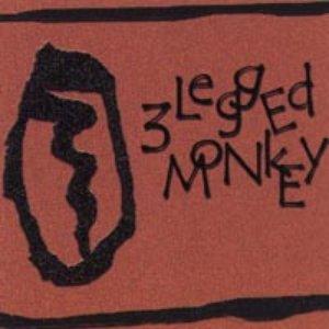 Bild für '3 Legged Monkey'