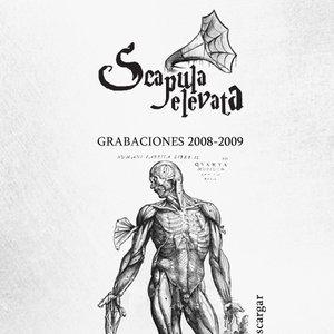 Bild für 'Grabaciones 2008-2009'