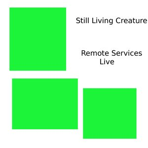 Image for 'Remote Services Step 2 (Live)'