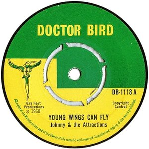 Image pour 'Young Wings Can Fly'