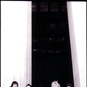 Imagen de 'The Coma Lilies'